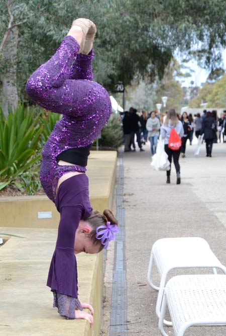 Open Day entertainment, no need for osteopathy here.