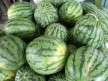 Singapore_watermelons