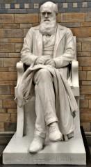 charles_darwin_statue_natural_history_museum_london